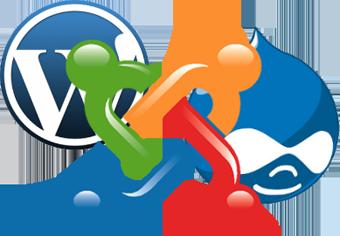 Content Management Systems (CMS) Solutions & Development